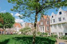Blue Skies in Amsterdam - The Londoner