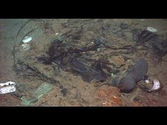 Titanic photo shows evidence of human remains.(by Claudine Zap) A newly released photo from the North Atlantic site of the shipwrecked RMS Titanic shows evidence of human remains, federal officials are saying. Rms Titanic, Titanic Wreck, Titanic Photos, Titanic History, Ancient History, Titanic Sinking, Titanic Ship, Titanic Movie, Southampton