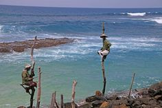 Stick Fishermen, Sri Lanka by UniquePhotoArts