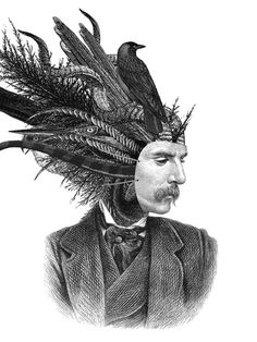 """♥ Dan Hillier """"Feather and Claw"""" Series 