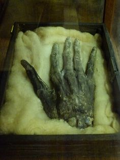 Hand of Glory. I think this would be a fun thing to attempt to DIY. A craft version made of paper mache, I mean. Not a real hand.