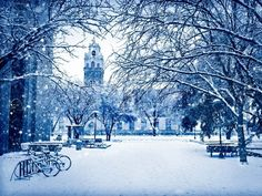 Winter scene at Texas Tech campus
