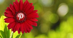 How to get the most out of Pinterest's Guided Search