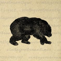 Digital Printable Grizzly Bear Graphic by VintageRetroAntique