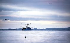 The Ocean Beaut, a modern trawler that calls Astoria its home port, still fishes year round. Salmon Fishing, The Locals, Columbia, Oregon, Boat, Mountains, World, Modern, Travel