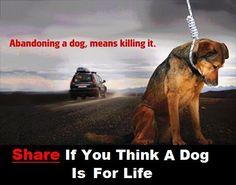 Share,share!!