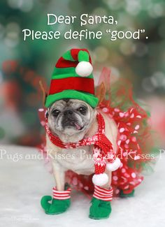 1a72ce74696 20 Best Pug Christmas images