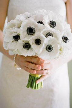 Anemone - Wedding Flowers by Season - Southernliving. Colors: white/cream, purple, blue, red, pink    Season: early winter, spring, early summer  A bridal bouquet of white anemones.