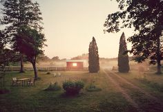 The Magical Quality of Felix Odells The Mist Photographs