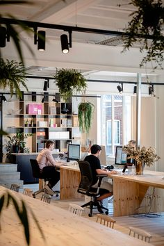 King George is a mad creative agency based in Sint-Niklaas, Belgium and Amsterdam, The Netherlands. Modular Lighting Instruments developped lighting for its offices, meeting rooms and stirring cafe. Corporate Office Design, Open Office Design, Office Interior Design, Office Interiors, Office Designs, Design Studio Office, Industrial Office Design, Open Space Office, Bureau Open Space