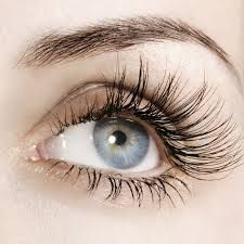 Cheap eyelash growth treatments, Buy Quality eyelash growth directly from China eyelash serum Suppliers: Powerful Healthy Beauty Eyelash Growth Treatments Makeup Eyelash Enhancer Longer Thicker Eyelashes Serum Eyes Care Eye Lash Long Thick Eyelashes, How To Grow Eyelashes, Thicker Eyelashes, Longer Eyelashes, False Eyelashes, Natural Eyelashes, Fake Lashes, Permanent Eyelashes, Beautiful Eyelashes