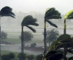3 Tips to Prevent Roof Damage for Hurricane Season | Hercules Roofing