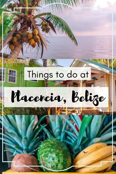 Here are the top 9 things to do in Placencia, Belize - plus tons of travel tips for Belize Belize Resorts, Belize Vacations, Belize Travel, Cozumel, Belize Snorkeling, Honduras, Tulum, Costa Rica, Belize City