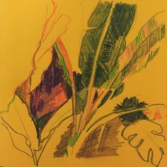 Зарисовки из аптекарского огорода МГУ. Наконец то мы туда добрались! . Цветные карандаши . #artist #graphic #illustration #colours #artcomunity  #sketch #sketchbook #sketching #yellowdrawing #иллюстрация #рисунок #скетч #artwork #скетчбук #рисунокрастений#plants#plantdrawing #огородмгу #рисуюкаждыйдень #dailysketches #скетчбук #аптекарскийогород #растения #иллюстратор #drawing #draw #чбкарандаш #colourpensils #цветныекарандаши #рисунокцветнымикарандашами