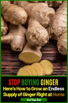 Here's How to Grow an Endless Supply of Ginger Right at Home #garden #ginger #growginger #homegarden #homegrown Health Benefits, Tasty, Stuffed Mushrooms, Spices, Stuff Mushrooms, Spice