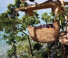 treehouse village - Google Search