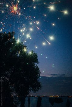 Fireworks over trees and water by Abby Mortenson - Stocksy United Barefoot Beach, Beach Aesthetic, Fireworks, Astronomy, Cosmic, Bunny, Aesthetics, Trees, Stock Photos