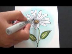 Coloring Whites  from Color of Happy by Shelby / Copic cool grays