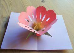 Four-eared bunny: Vappukukka Pop Up Flower Cards, Fun Crafts, Bunny, Ear, Tableware, Flowers, Fun Diy Crafts, Cute Bunny, Dinnerware