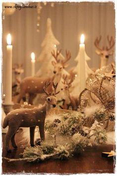 Christmas decor...