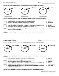 cell membrane coloring worksheet answer key coloring pages pinterest cell membrane. Black Bedroom Furniture Sets. Home Design Ideas