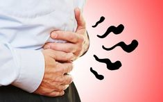 The Shocking Truth About Gut Health and Probiotics Enteric Nervous System, Psychological Symptoms, Getting Rid Of Bloating, Small Intestine Bacterial Overgrowth, Leaky Gut Syndrome, Good Health Tips, English Idioms, Fermented Foods, Heartburn