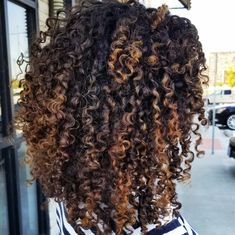 Ombre Curly Hair, Brown Curly Hair, Colored Curly Hair, Curly Hair Cuts, Short Curly Hair, Curly Hair Styles, Natural Hair Styles, Curly Bob, Black Hair