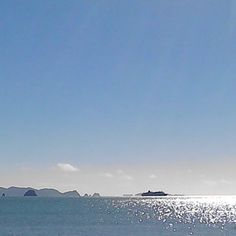 Small cruise ship in the bay this morning