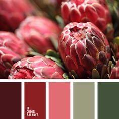 burdeos, colores para decorar cuartos, paletas de colores, rojo oscuro, rojo sangre, rojo vino, selección de colores, tonos rojos, tonos verdes, verde, verde oliva.