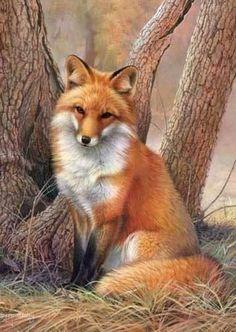 This red fox looks like a Joni Johnson Godsy painting.