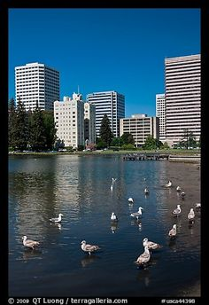 Lake Merritt, Oakland, CA.  Kaiser telephone used to be located in the long square building which was my Grandmothers place of employment.