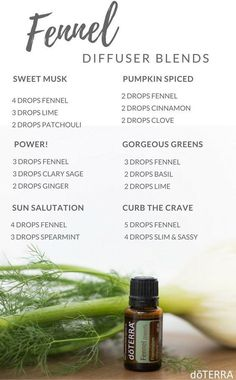 doTERRA Fennel Essential Oil Uses with Food and Diffuser Recipes Fennel Essential Oil, Essential Oil Uses, Doterra Essential Oils, Doterra Blends, Fennel Oil, Essential Oil Diffuser Blends, Doterra Diffuser, Diffuser Recipes, Found Out