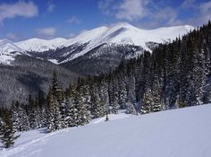 Think hiking season in Colorado ended with the arrival of snow? Think again! If you're not afraid to bundle up and get your blood pumping for warmth, a winter hike or snowshoe in Colorado is a great idea.