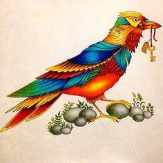 Pintura TOP!! E se é TOP, a gente vê por aqui!!! Use #colorindolivrosTOP @Regrann from @carlackon - ✏️ Materiais: - Lápis aquarelável Faber-Castell (24 cores) - Lápis bicolor comum Faber-Castell (48cores) #florestaencantada #florestaencantadatop #jardimsecreto #jardimsecretotop #jardimsecretoinspire #nossojardimsecreto #secretgarden #enchantedforest #bird #Regrann