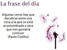 quotes quotations paulo coelho frases paulo cohelo pablo cohelo frases