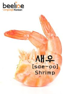 Learn how to say shrimp in Korean