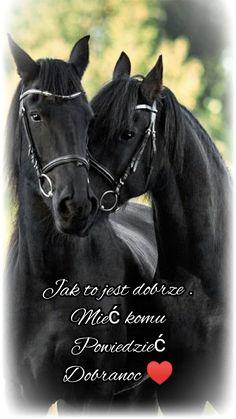 Horses, Garden, Animals, Garten, Animales, Animaux, Lawn And Garden, Gardens, Animal