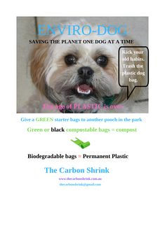 Sustainable Environment, Sustainability, Compost Bags, Dog Bag, Green Park, Healthy Dog Treats, Save The Planet, Biodegradable Products, Helpful Hints