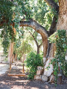 indian springs ranch nevada wedding — Gaby J Photography Rustic Wedding Venues, Outdoor Weddings, Indian Springs, Wedding Details, Wedding Ideas, Nevada, Ranch, Wedding Planning, Dream Wedding