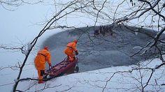 Ils sauvent un troupeau de cerfs pris par la glace!