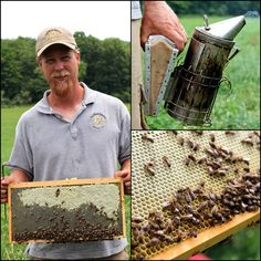 Alan Holmberg of Full Bloom Apiaries. His self-sufficient, full time honey bee farm produces local #Connecticut honey, unfiltered and non-pasteurized. Just pure honey as nature intended it to be.