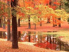 صور طبيعة ، طبيعة خلابة ، أجمل المناظر الطبيعية
