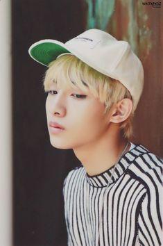 "NCT Season's Greetings"" ""© waitkpksz Nct 127, Nct U Members, Nct Dream Members, Taeyong, Jaehyun, Nct Winwin, Daddy Long, Sm Rookies, Fandom"