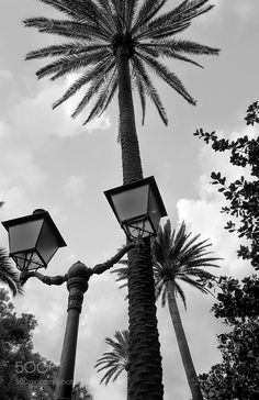 Street Lamps by cristinagarbarino40 #architecture #building #architexture #city #buildings #skyscraper #urban #design #minimal #cities #town #street #art #arts #architecturelovers #abstract #photooftheday #amazing #picoftheday