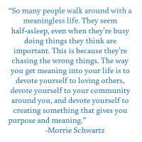 Morrie Schwartz quote - the meaning of life is to devote yourself to loving others - Tuesdays with Morrie by Mitch Albom