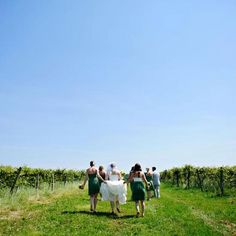 Eco-fy Your Wedding!