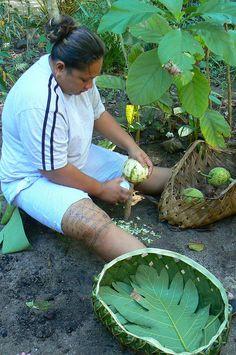 Harvesting ulu (Samoan woman malu by Polynesian Xplorer)