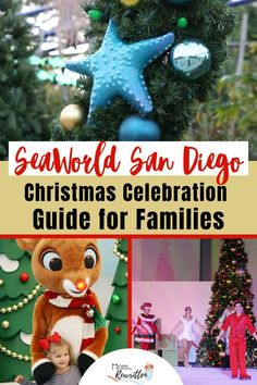 It's the holiday season at SeaWorld San Diego Christmas Celebration. See how they celebrate a San Diego Christmas from palm trees to penguins! California Getaways, California Vacation, Winter Travel, Holiday Travel, California With Kids, Southern California, Sesame Street Christmas, Popular Christmas Songs, Best Amusement Parks