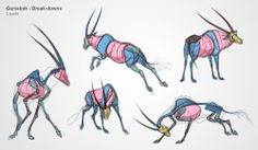 A type of oryx that has really cool patterns on its legs and a slightly thicker neck than other subspecies (at least from what I could tell).