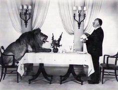Alfred Hitchcok sirviéndole el té a Leo, el león de la MGM.  1958
